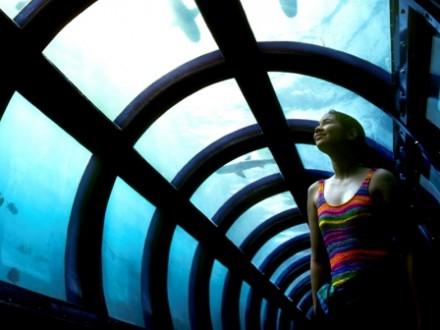 pulau putri - akuarium bawah laut