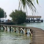 Pulau Kotok - dermaga ular