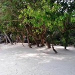 Pulau Alam Kotok - view2
