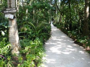 Pulau alam kotok - view3