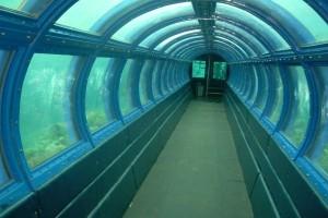 Pulau putri - Under sea Aquarium