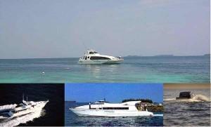 Pulau pantara - boat