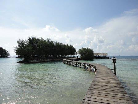 Pulau alam kotok - web