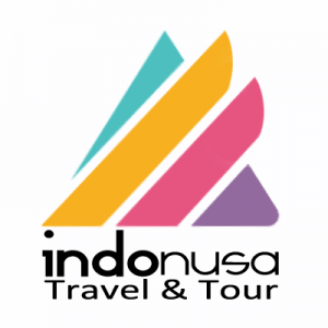 Logo-Indonusa-portrait