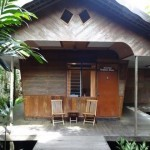rimba lodge tanjung puting