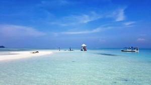 Pulau Gosong Patric