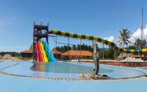 Coconut Island (10)