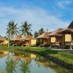 Coconut Island (11)