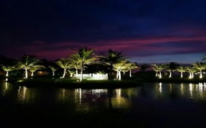 Coconut Island (4)