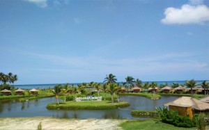 Coconut Island (9)