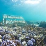 Pulau Pahawang (13)