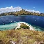 Pulau Komodo (6)
