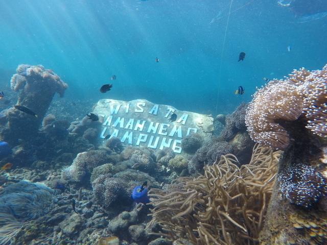 Taman Nemo